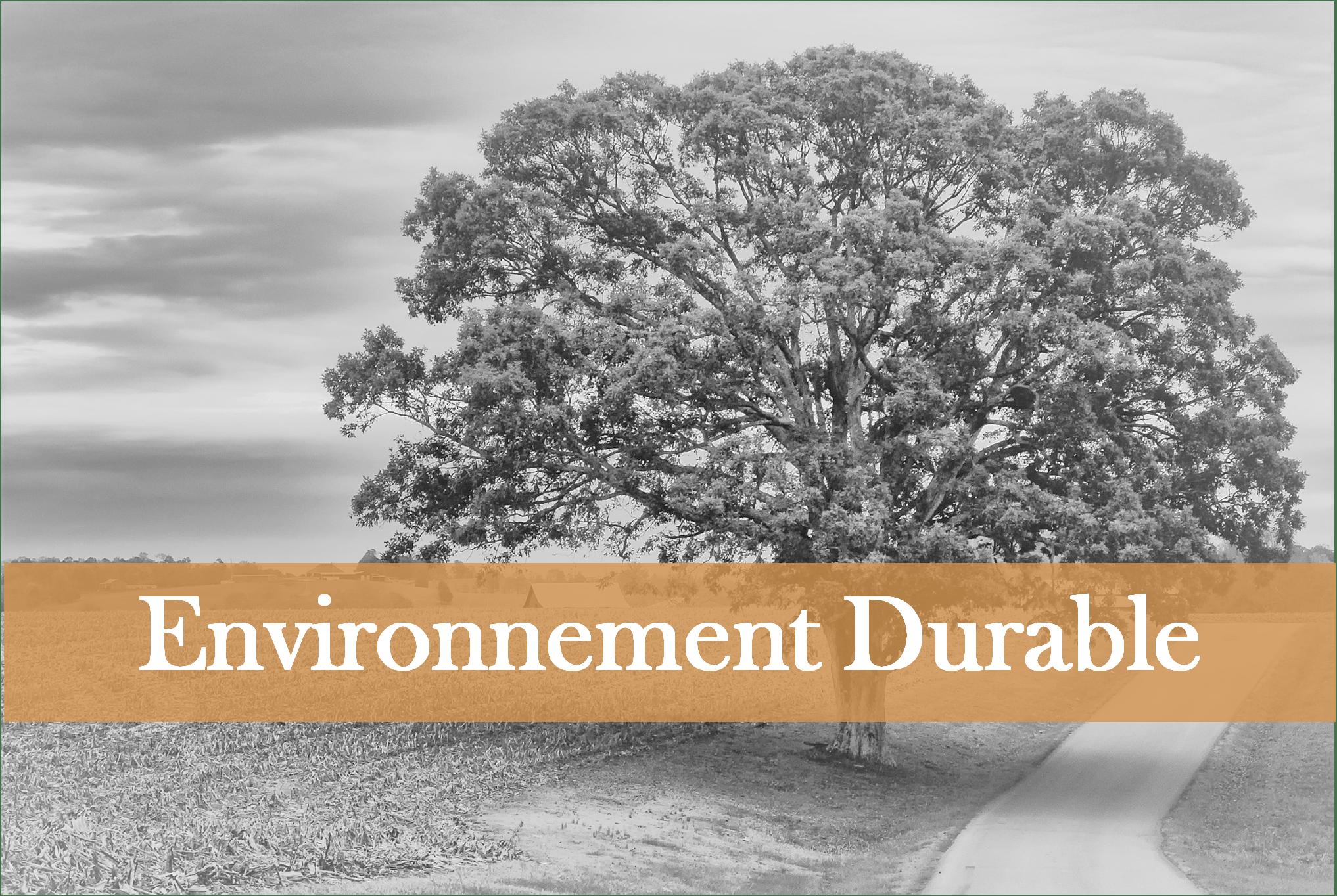 santé-environnementale-protection-nature-domoepione
