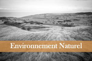 santé-environnementale-nuisances-dégradation-domoepione