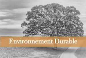 Performance-sante-environnement-developpement-durable-domoepione