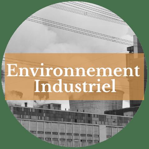 DOMŒPIONE-sante-environnement-industriel